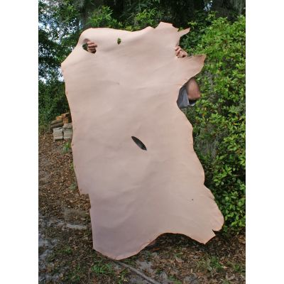We start with a vegetable tanned hide like this